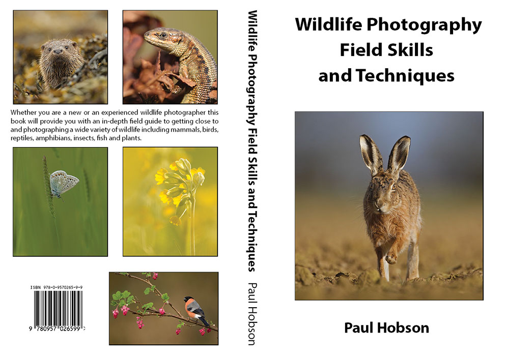 Book wildlife photography